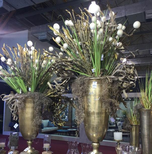 Plantas / Folhagens / Flores